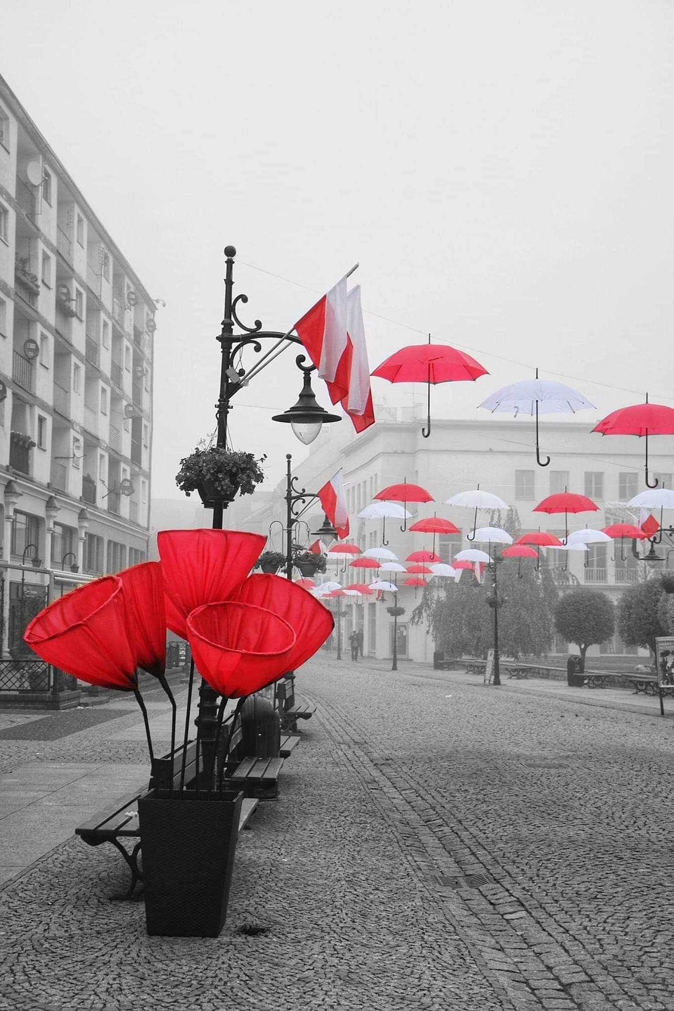 100 reasons why I love Poland